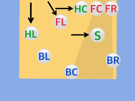 フォーメーション図17